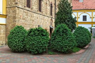 Small garden around monastery Privina Glava, Serbia
