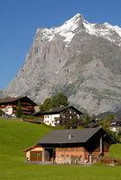 Bergidyll in G4rindelwald