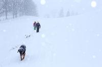 Kinder mit Hund beim Winterwandern