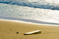 Surfboard on the beach. Surfing