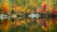 Fall Reflections V