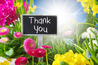 Sunny Spring Flower Meadow, Thank You