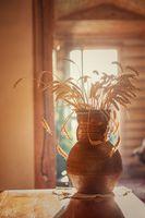 wheats and old jug