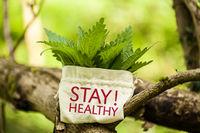 """Brennnesseln mit Wort """"Stay Healthy!"""""""