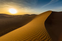 landscape in desert at sunset
