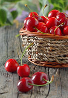 ripe cherries in a basket