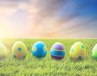 close up of colored easter eggs on grass