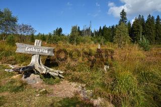 Lotharpfad im Schwarzwald