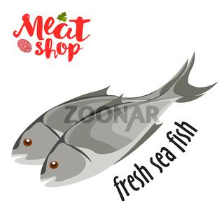 Meat vector - fresh sea fish icon. Fresh flat meat icon.