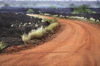 Frozen volcanic lava in the eastern Tsavo National Park in Kenya