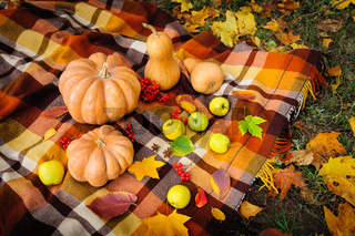 Autumn thanksgiving still life