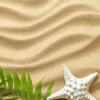 Summer Background with Green Palm Leaves and Starfish