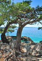 idyllischer Platz an der Seepromenade in Brela,Makarska Riviera,Adria,Kroatien