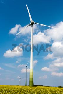 Windräder in einem Rapsfeld
