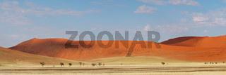 Desert dune panorama