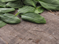 Organic spinach on a wooden table