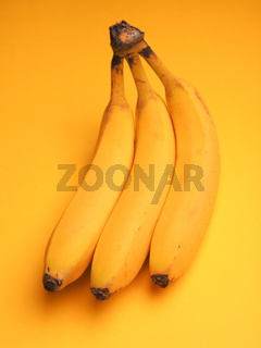 Three fresh bananas