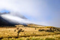 Mountain fields landscape in New Zealand