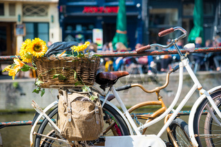 View of old bicycle with flowers in the Amsterdam