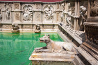 wolf statue of siena fountain
