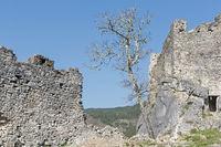 Kastell des Petrapilosa