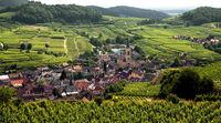 das Weindorf Oberrotweil im Kaiserstuhl