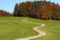 kurviger Weg im Herbst