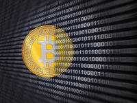 A coin of bitcoin