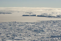covered with ice and icebergs near the Antarctic Peninsula the straits in winter