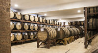 Wooden barrels deposit for Brazilian cachaca sugarcane liquor aging