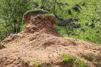 9-46-Basaltsteinbruch-Zinst-35.jpg
