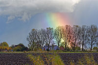 Breiter Regenbogen