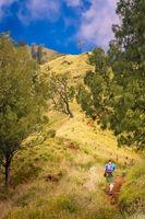 Trekker walking up the path to the summit of Gunung Rinjani