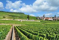 Weinort Oger bei Epernay in der Champagne region,Frankreich