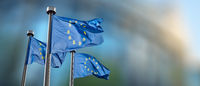 Symbol bitcoin on the blue flag.