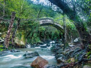 Bridge over the river 'Rio de la Miel' Parque natural de los alcornocales, Andalusia, Spain