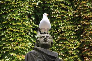 Möve auf Martin-Luther Statue