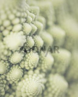 Romanesco - eine italienische Blumekohlsorte mit faszinierenden Strukturen.