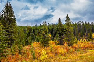 Fine 'Indian summer' in Banff National Park