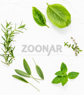 Various fresh herbs from the garden peppermint , sweet basil ,rosemary,oregano, sage and lemon thyme on white wooden background with flat lay and copy space.