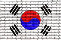 flag of Korea painted on brick wall