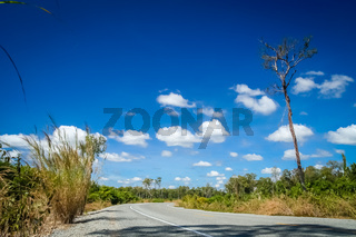 Empty paved road in southern Cambodia