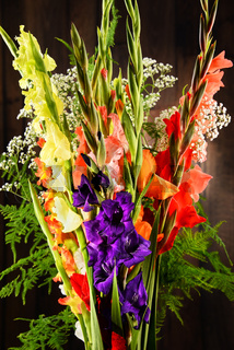 Composition with bouquet of gladiolus flowers.