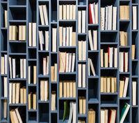 Books on blue wooden bookshelf