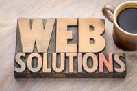 web solutions word abstract in wood type