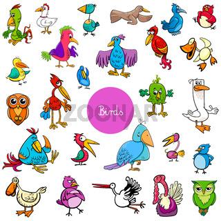 cartoon birds animal characters big collection