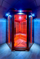 Home electric sauna