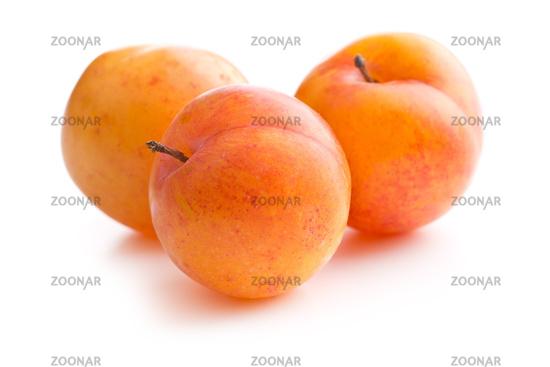 Ripe yellow plums.