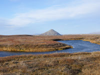 Palagonitkegel Vindbelgjarfjall am See Mývatn in Island im Herbst