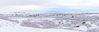 Winter landscape Iceland Panorama
